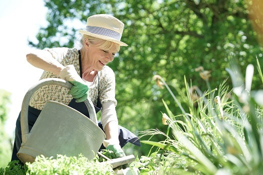 How to Make Gardening a Safe Activity for Older Adults with Dementia