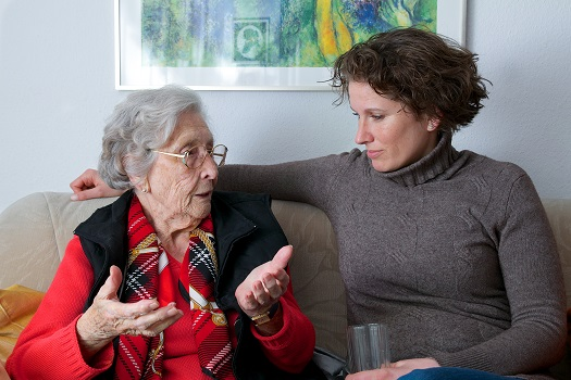 Sources of Support for Dementia Caregivers in Edmonton, AB